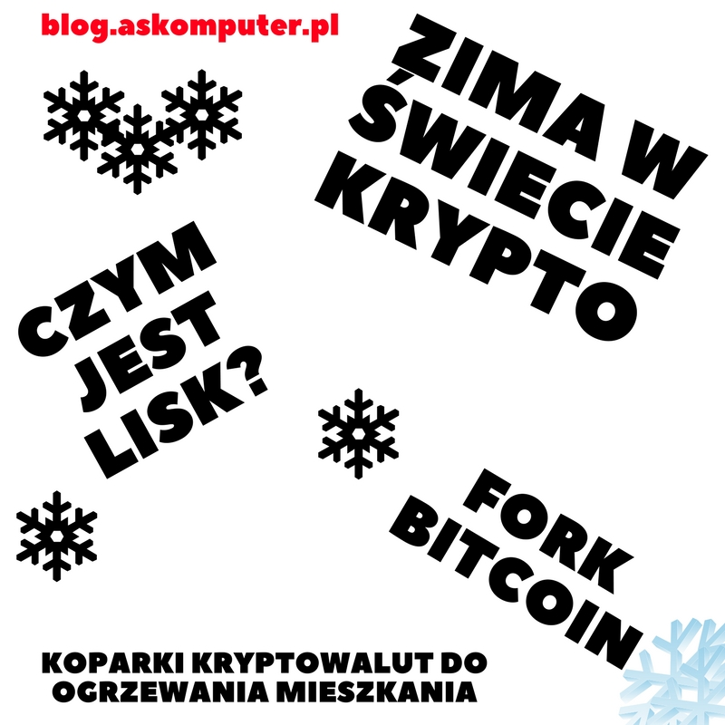 Czym jest Lisk? / Zima w świecie krypto / / Finas #8