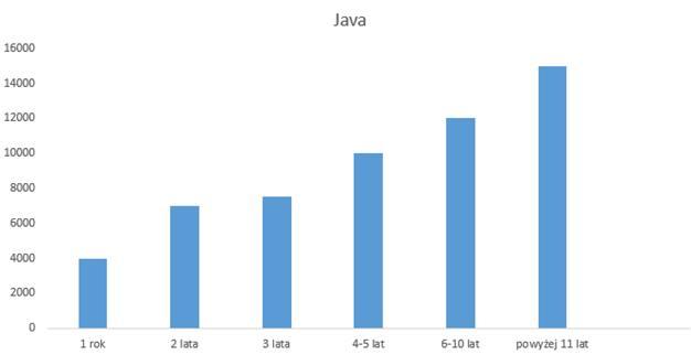 Ile zarabia programista